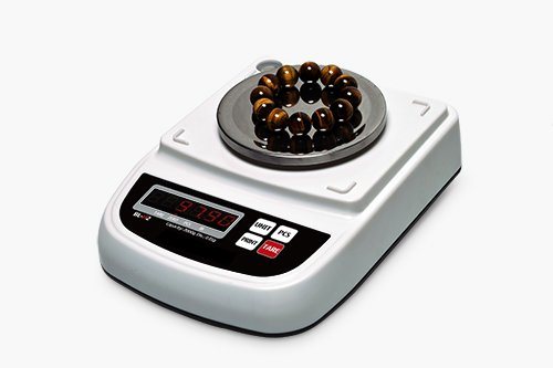 BL-H2 Portable Type of Precision Balances